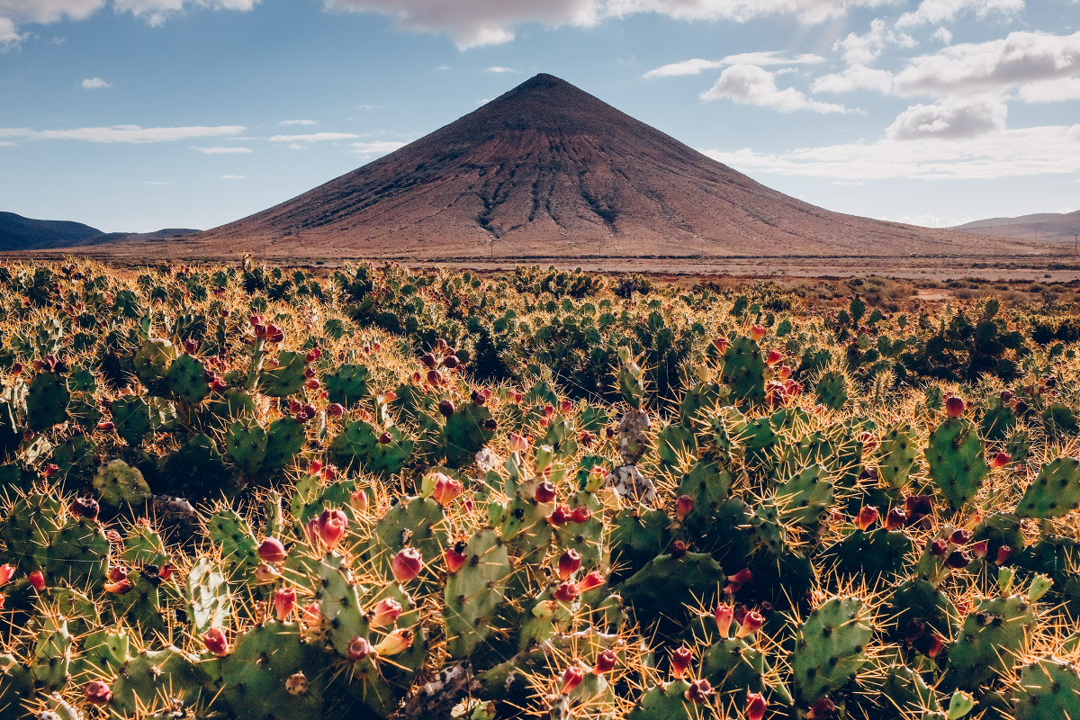 Corralejo, Fuerteventura | © Jsem Jary
