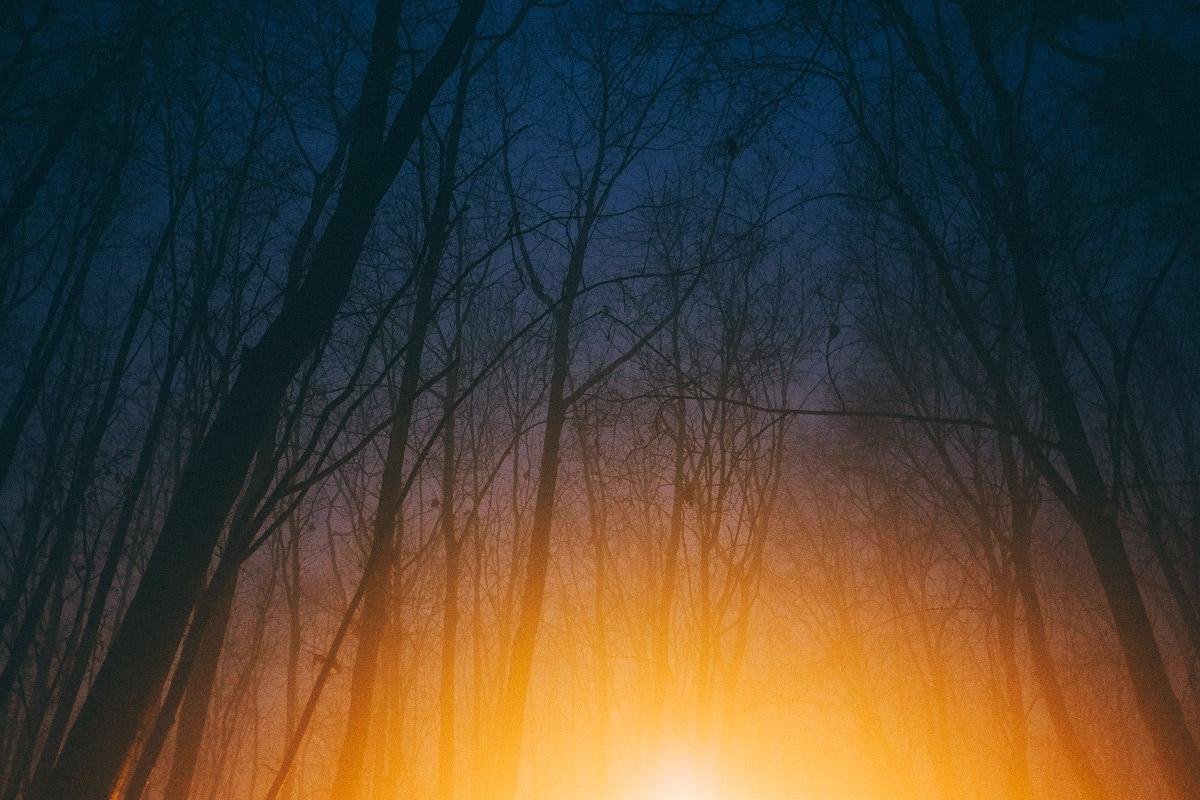 Mlha v Šárce | © Jsem Jary